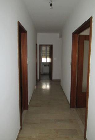 Ufficio a Badia Polesine in vendita (2)