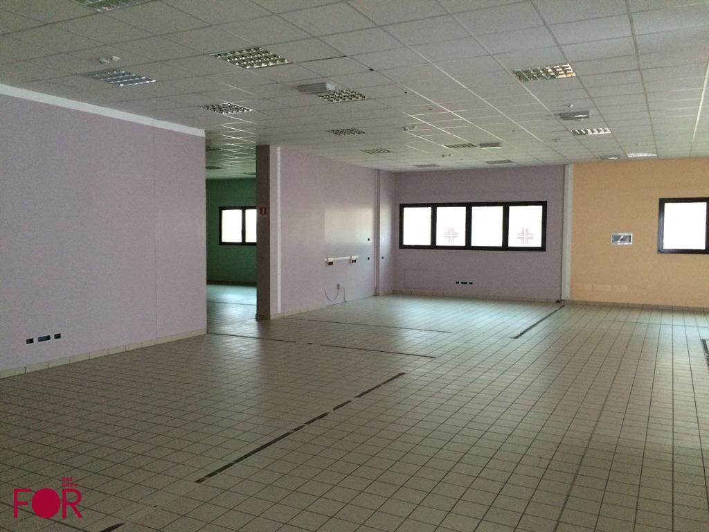 ufficio a Badia Polesine in vendita 5